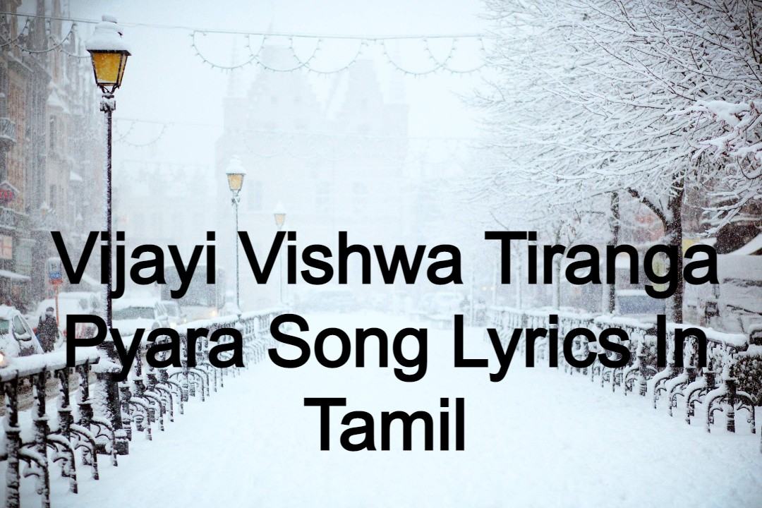 Vijayi Vishwa Tiranga Pyara Song Lyrics In Hindi
