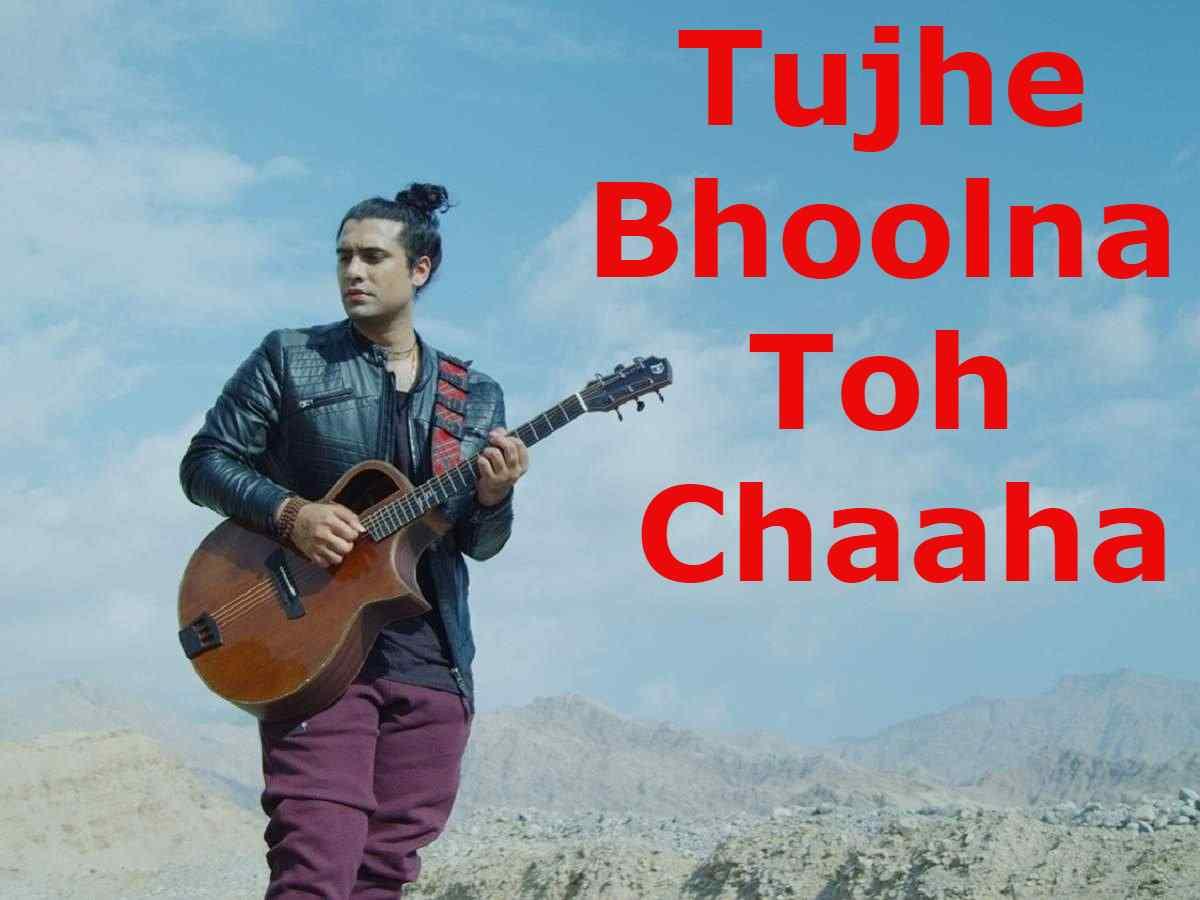 Tujhe Bhoolna Toh Chaaha Lyrics In Hindi
